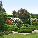 Exklusive Gartengestaltung